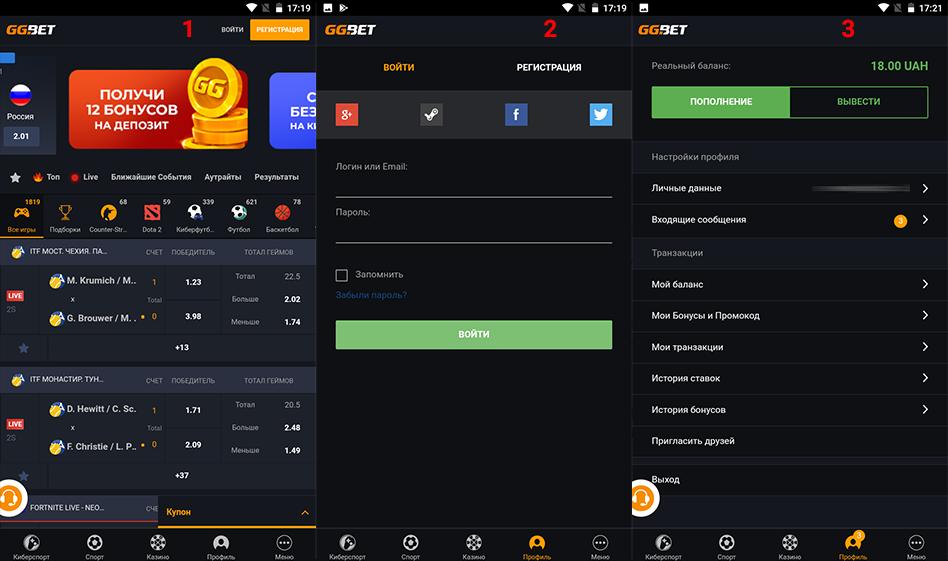 Три действия чтобы зайти через приложение Андроид в личный кабинет: нажать кнопку «Войти«, ввести данные, нажать на значок человека